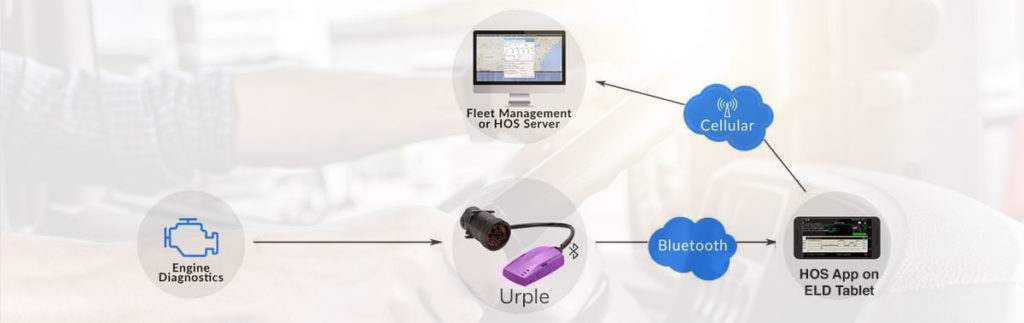R&L Fleet Management - Urple - Banner